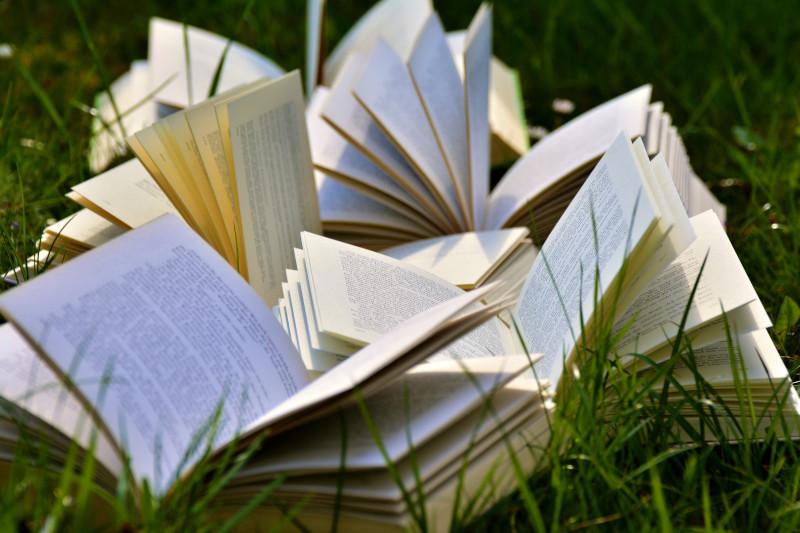 может чтение романов улучшить ваш английский